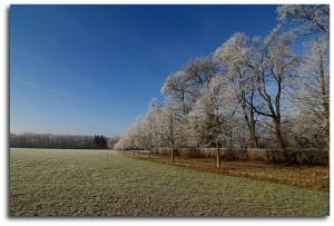 Winter Landscape And Contrails